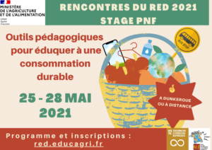 Rencontres RED 2021 : Outils pédagogiques et projets pour éduquer à une consommation et une production durable @ Dunkerque